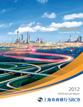 2012年年度报告(英文)