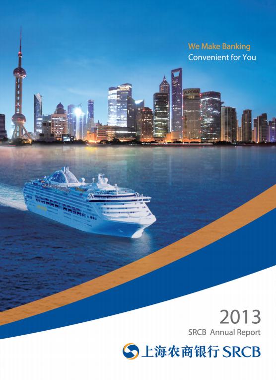 2013年年度报告(英文)