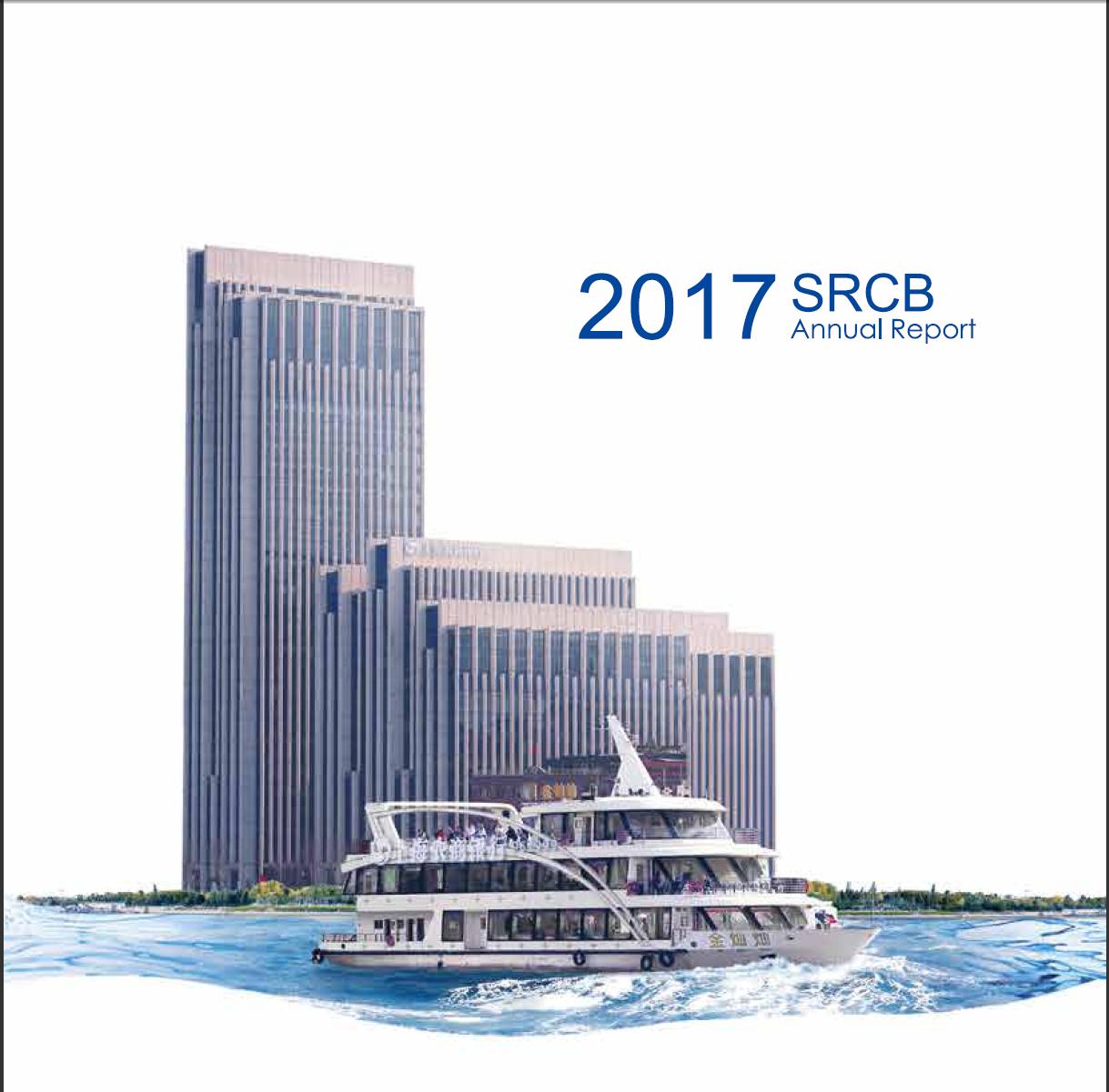 2017年年度报告(英文)