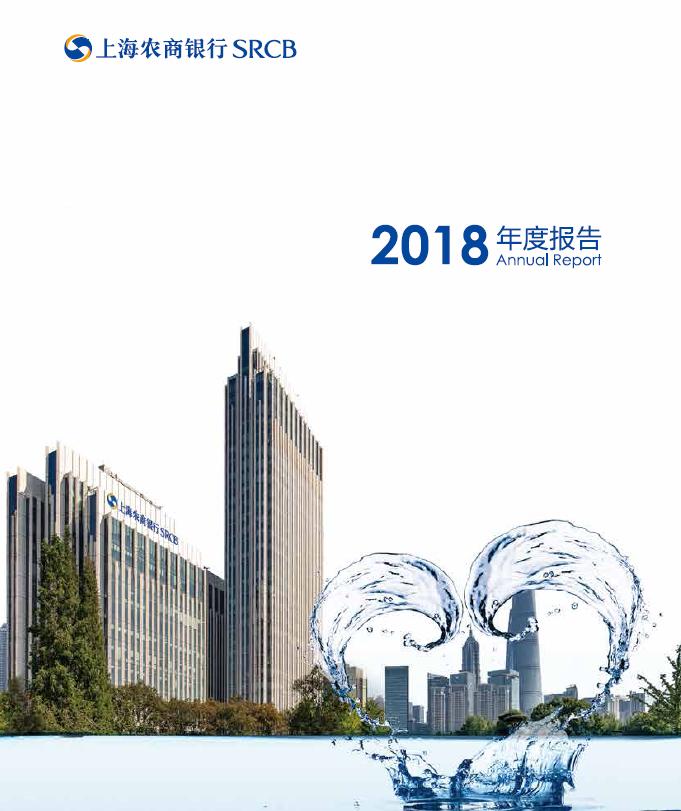 2018年年度报告(中文)