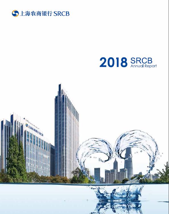 2018年年度报告(英文)