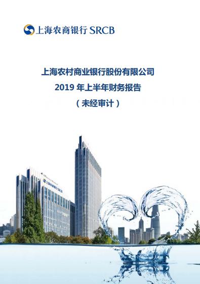 2019年半年报(未审计)