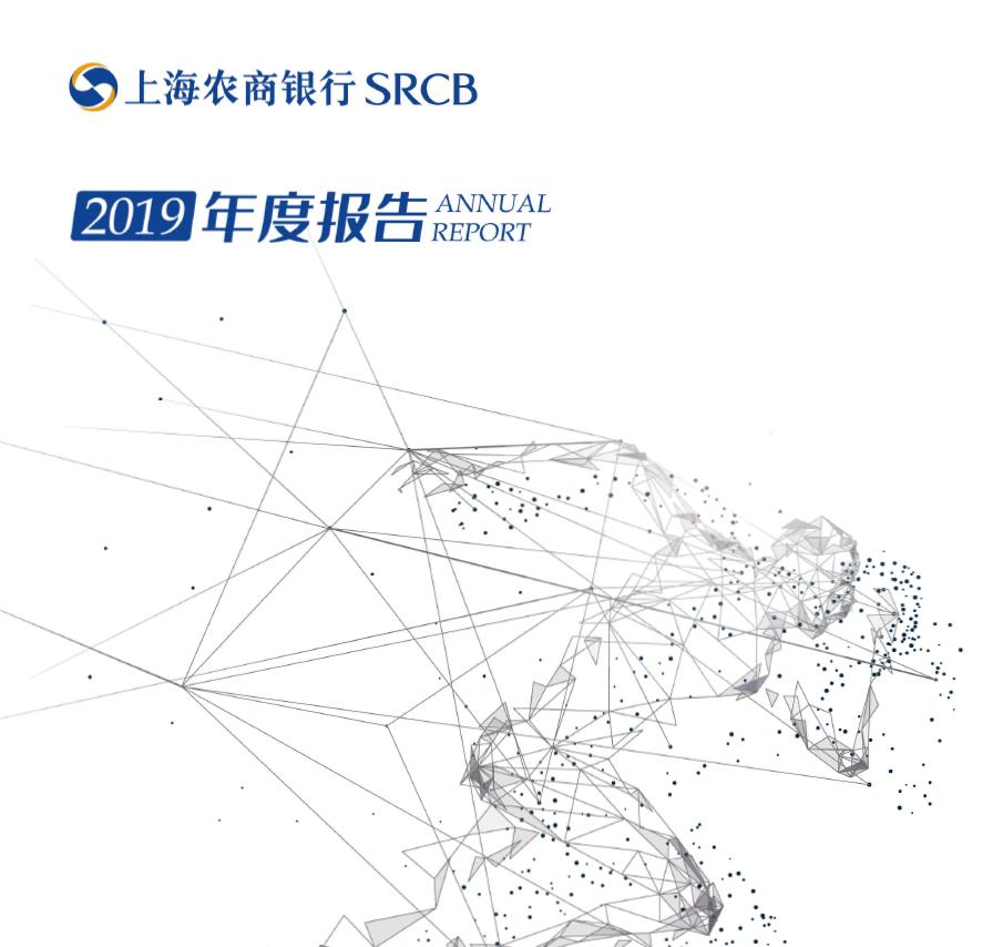 2019年年度报告(中文)