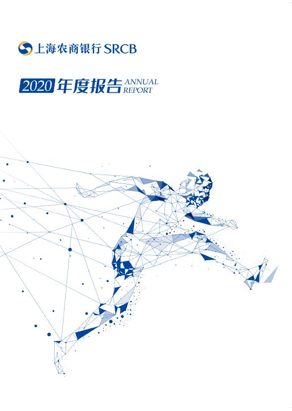 2020年年度报告(中文)